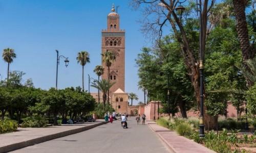 Zdjęcie MAROKO / Marrakesz / Marrakesz / Meczet Koutoubia