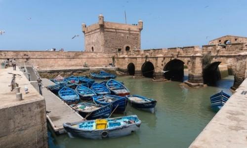 Zdjecie MAROKO / Essaouira / Essaouira / Essaouira
