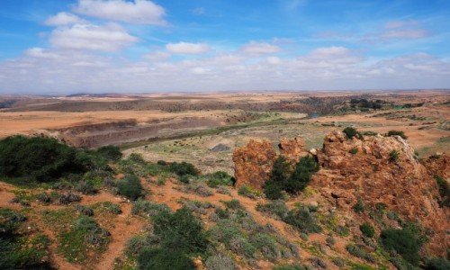 Zdjecie MAROKO / Sus-Massa / Okolice Afrag / W dolinie rzeki Massa
