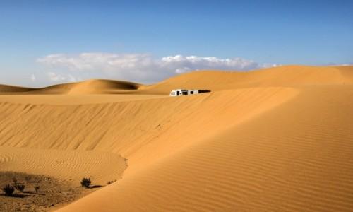 Zdjecie MAROKO / Sahara Zachodnia / w piaskach Sahary / W piaskach pustyni