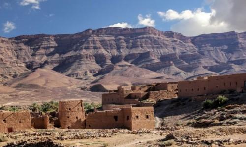 Zdjecie MAROKO / Dara-Tafilalt / Zakura / Marokańska klasyka