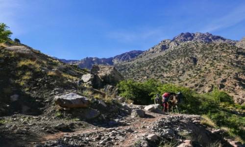 Zdjecie MAROKO / Atlas Wysoki / Atlas Wysoki / W drodze na Jebel Toubkal