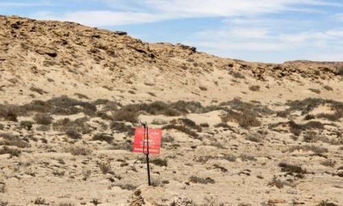 Zdjecie MAROKO / Sahara Zachodnia / przy drodze / Lokalne rozrywki