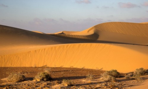 Zdjecie MAROKO / Sahara Zachodnia / w piaskach pustyni / Piaski