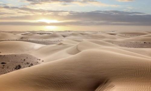Zdjecie MAROKO / Sahara Zachodnia / w piaskach pustyni / Morze piasku
