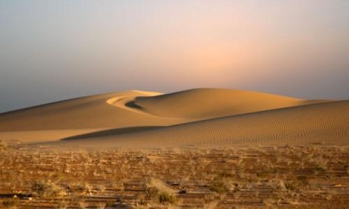 MAROKO / Sahara Zachodnia / w piaskach pustyni / Na tle niczego