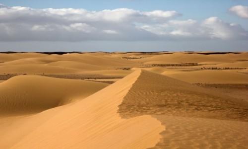 MAROKO / Sahara Zachodnia / w piaskach pustyni / Ot tak w piasku
