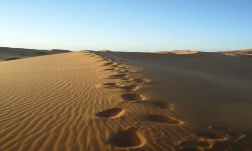 Zdjęcie MAROKO / -Sahara / Erg Chebbi / Niezwykły urok Sahary