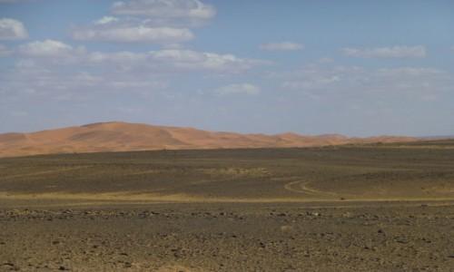 Zdjecie MAROKO / -wschód / Sachara Wschodnia / Sahara Wschodnia