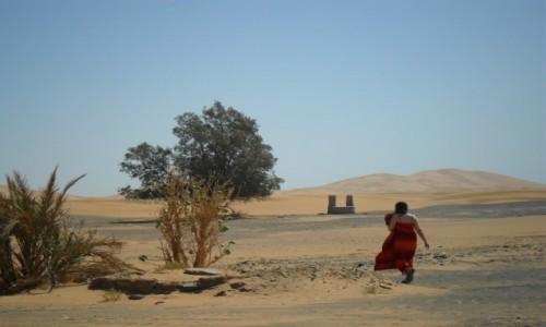 Zdjecie MAROKO / Merzouga / Erg Chebbi / W słońcu pustyni