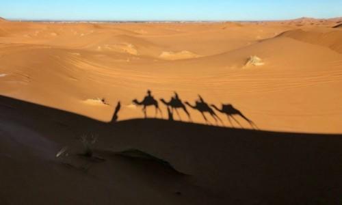 Zdjecie MAROKO / Merzouga / Erg Chebbi / Cienie na piasku