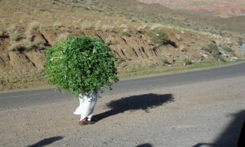Zdjecie MAROKO / Ouarzazate / Ouarzazate / Po drodze do Ouarzazate