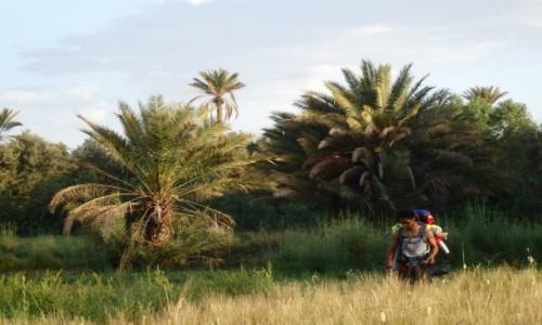 MAROKO / Draa Valley / Draa Valley / Autostopem przez Maroko