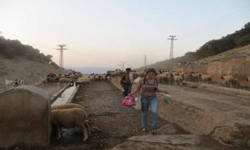 Zdjecie MAROKO / Ouarzazate / wieś / Wędrówka po bezdrożu