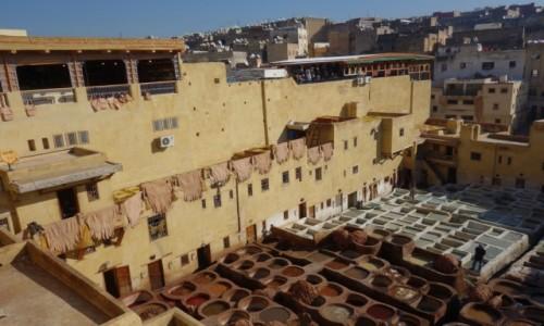 Zdjecie MAROKO / Północne Maroko / Fez / Garbiarnia