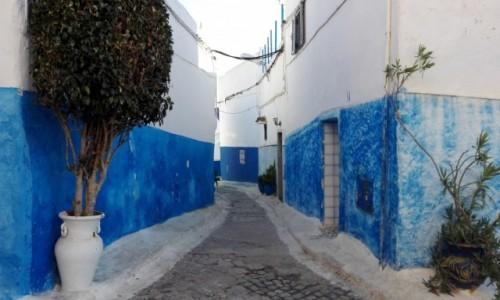 Zdjecie MAROKO / Zachodnie Maroko / Rabat / Greckie klimaty