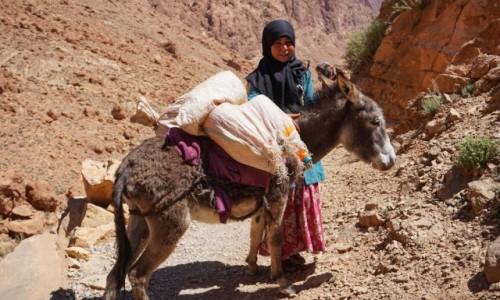 Zdjecie MAROKO / Atlas / Todra / Dziewczynka z rodu Tuaregów