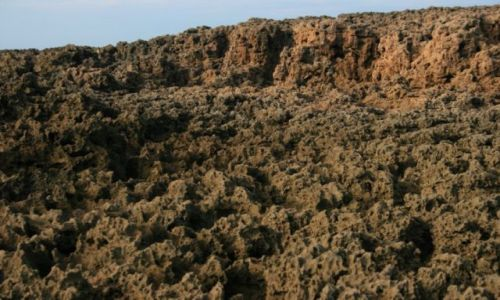 Zdjecie MAROKO / wybrzeże Maroka / przed Es-Sawirą / skała marokańska z bliska