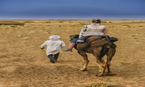 Zdjecie MAROKO / - / Południowe Maroko / Sahara