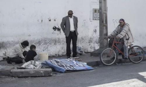 MAROKO / Maroko / gdzieś po drodze / Handel rybami
