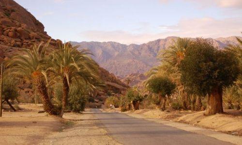Zdjęcie MAROKO / brak / południe / Maroko2