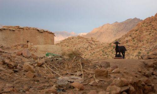 Zdjecie MAROKO / brak / południe / Maroko3
