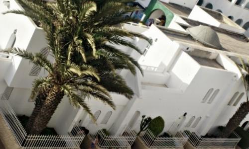 Zdjecie MAROKO / - / Agadir / Agadir