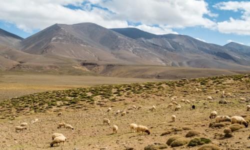 Zdjecie MAROKO / prowincja Ouarzazat / Ighil Makun / Ighil Makun