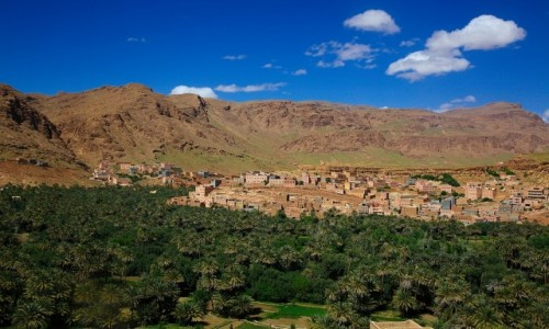 Zdjecie MAROKO / Ouarzazate / . / Tinghir