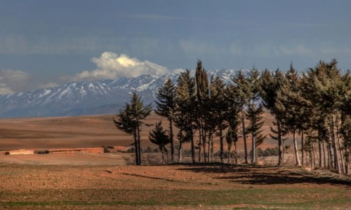 MAROKO / Maroko / gdzieś po drodze / Kolory Maroka