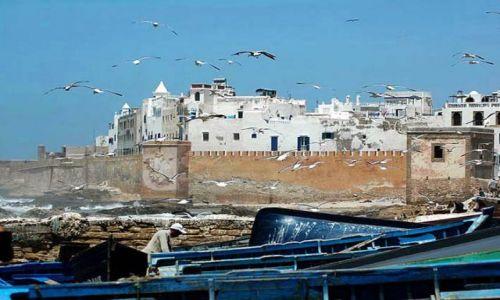 Zdjęcie MAROKO / nad oceanem / Essauira / Essauira widok z portu