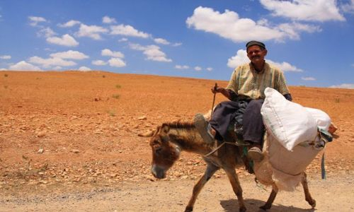 Zdjecie MAROKO / brak / na trasie Marrakesz Oualidia / W drodze ...