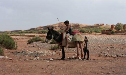 Zdjecie MAROKO / Ouarzazate / Ait ben Haddou / Mali przwoznicy