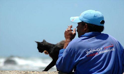 Zdjęcie MAROKO / nad Oceanem / Essauira / rybak