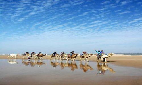 Zdjecie MAROKO / nad Oceanem / Essauira / wycieczka