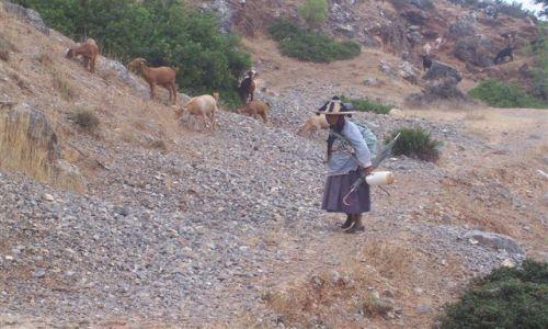 Zdjecie MAROKO / Góry Rif / Szefszawan / Życie Berberów