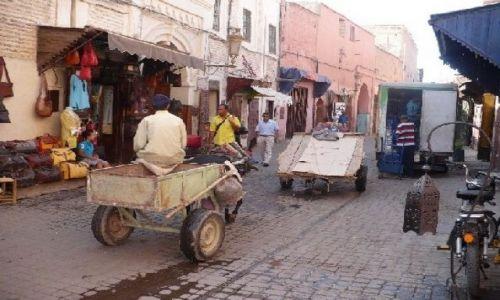 Zdjecie MAROKO / Marrakech / Marrakech / Tam jest naprawdę pięknie