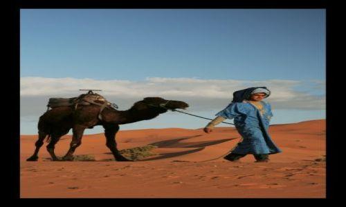 Zdjecie MAROKO / sahara / sahara / ludzie pustyni 3