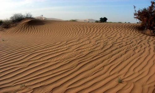 Zdjęcie MAROKO / brak / Merzouga / Sands of Sahara