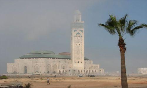 Zdjecie MAROKO / okolice Zagory / w drodze / Meczet w tle nadciągającej burzy piaskowej