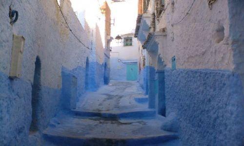 Zdjecie MAROKO / Północne Maroko / Chefchaouene / niebieska medin