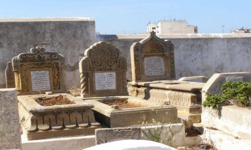 Zdjecie MAROKO / Meknes / cmentarz / memento mori 2