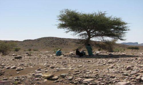 Zdjecie MAROKO / Desert / w drodze / Samotność pośród kamieni