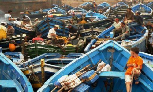 Zdjecie MAROKO / brak / Essaouira / syn rybaka