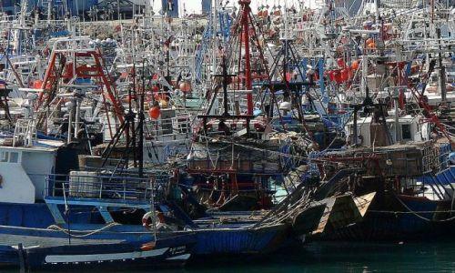 Zdjecie MAROKO / brak / Tanger / Port