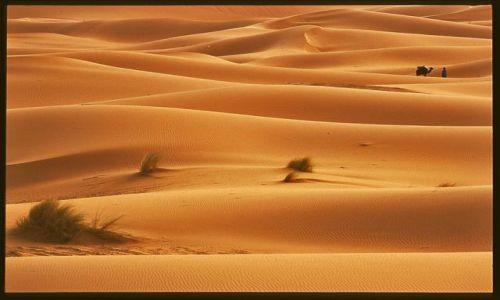 Zdjecie MAROKO / Poludnie,El Rachidia / Erg Chebbi / Maroko 5