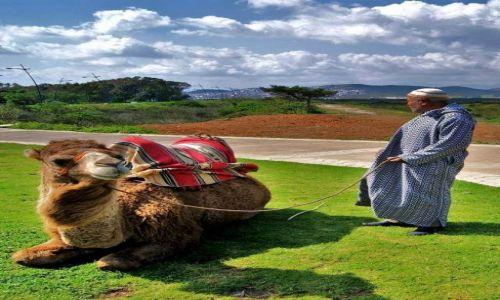 Zdjecie MAROKO / Maroko / w drodze: Ceuta-Tetouan / Odpoczynek...
