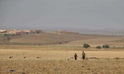 Zdjecie MAROKO / okolice Tafraote / Maroko / w drodze