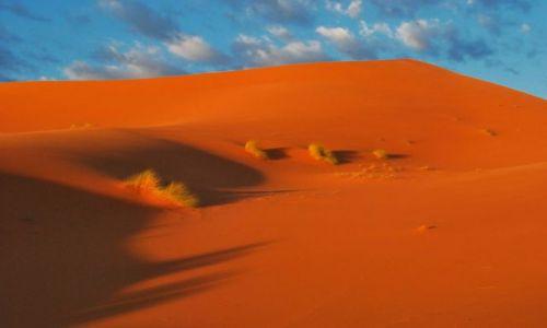 Zdjecie MAROKO / Południe Maroka - Merzouga / Erg Chebbi / Cisza o świcie...