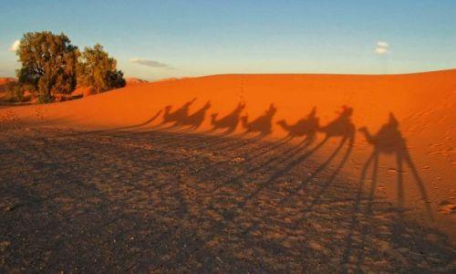 MAROKO / Południe Maroka - Merzouga / Erg Chebbi / Karawana ruszyła...